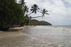 Playa Bahia Manzanillo - Isla de Providencia, un lugar inolvidable! http://www.sanandresislas.com.co/playa-bahia-manzanillo-isla-de-providencia