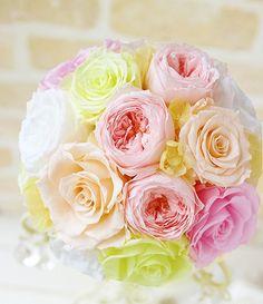 Lighting, Rose, Flowers, Plants, Pink, Light Fixtures, Florals, Lights, Roses