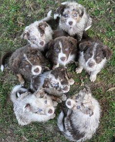 cuties!!!