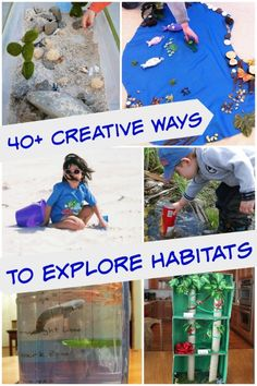 Hands-on science and craft activities that explore a variety of animal habitats!