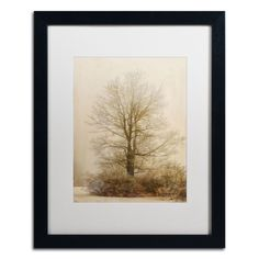 Tan Tones in the Fog by Lois Bryan Matted Framed Photographic Print