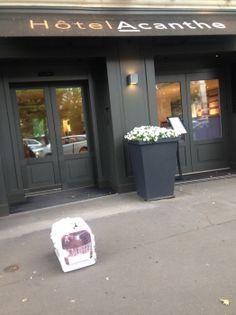 @Cat_Britivana a testé pour vous l'hôtel Acanthe à #BoulogneBillancourt #ChoiceHotels #AmbassadeurPetFriendly