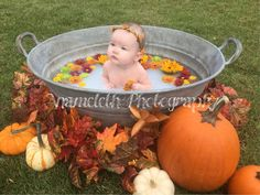 Anameleth Photography Fall Flowers Pumpkin Milk Bath Baby Photo Anameleth Photography Fall Flowers P Fall Baby Pictures, Baby Girl Photos, Halloween Baby Pictures, Fall Pics, Fall Photos, Fall Baby Pics, Milk Bath Photos, Bath Pictures, Pumpkin Flower