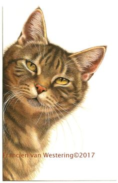 I loved drawing this curious cat!