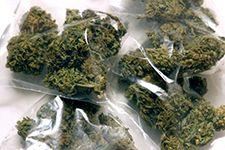 Cena Marihuany