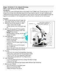 Essay personal statement image 4