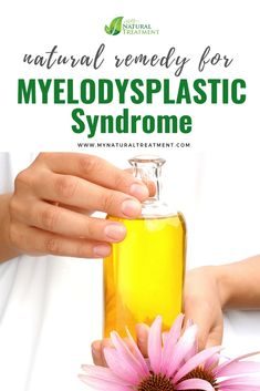 Here you have the most amazing natural remedy for myelodysplastic syndrome using only natural herbs and a neat diet plan. Home Remedies, Natural Remedies, Circulatory System, Blood Cells, Natural Herbs, Natural Treatments, Medical Conditions, Helpful Hints, The Cure