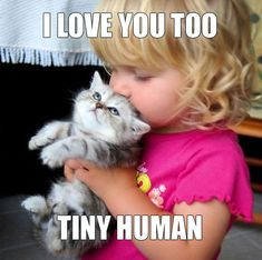 A tiny human and a tiny kitty!!!!  This was so me when I was a little girl.  I loved my kitties