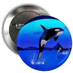 An Orca Whale Enjoy The Freedom! Discover a charming collection for animal and nature lovers. Button Badge, Whale, Magnets, Buttons, Cool Stuff, Badges, Funny, Freedom, Lovers