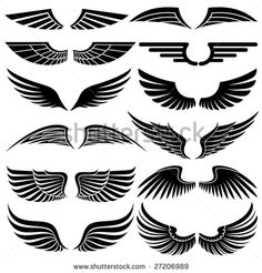 Wings. Elements for design. Vector illustration. - stock vector