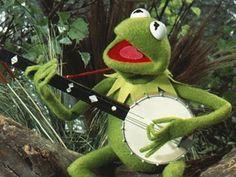 Almost all the Muppets are left-handed. | 25 Facts And Tidbits About The Muppets That Might Blow Your Mind