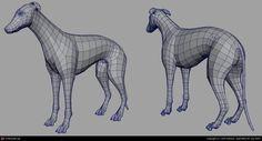 Greyhound by John Saleem   3D   CGSociety