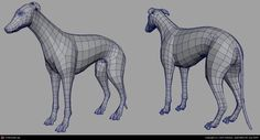 Greyhound by John Saleem | 3D | CGSociety