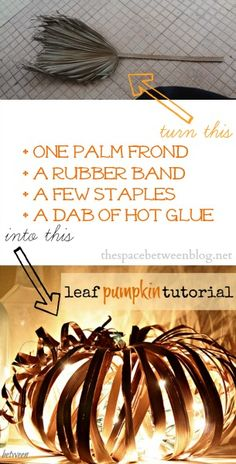 What a fun take on a pumpkin craft!  Use palm frond leaves, or maybe grapevines found in the craft store, to make this!