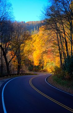 Great Smoky Mountains National Park, Tennessee by Nathan Firebaugh