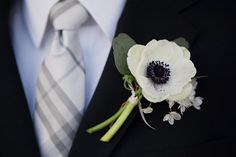Anemone boutonniere (originally from The Knot?  Couldn't find the right link, sorry...)