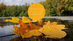 Herbstlaub auf der Terrasse in Schweden. Corporate Design, Web Design, Colors, Terrace, Advertising Agency, Autumn Leaves, Sweden, Ideas, Design Web