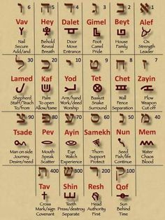 This is the Hebrew alphabet along with the sequence of the Hebrew marriage. The alphabet describes marriage. Compare this with the Gospel message and you will see why Messiah uses marriage language. The Words, Arte Judaica, Hebrew Words, Hebrew Bible, Bible Knowledge, Word Study, Aramaic Alphabet, Ancient Hebrew Alphabet, Learn Hebrew Alphabet