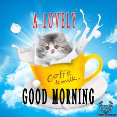 a lovely good morning #goodmorning #gm #quotes