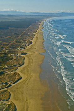 Ninety Mile Beach - Northland, NZ We've driven along this beach! great fun