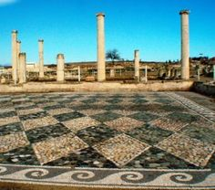 The Ancient Agora of Pella, Ancient Macedon (Macedonia). The birthplace of Alexander The Great and the capital city of the Kingdom of King Philip II of Macedon . Beautiful precious mosaics.