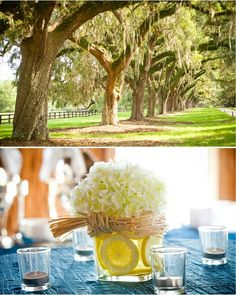 Charleston wedding at the Cotton Dock - Boone Hall Plantation from Corey Potter - Photographer