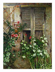 French Window Flowers