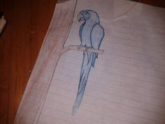 This is my blue maka i dont think i spelled maka right lol if u want me to draw more my name in here is Sea Hawks!