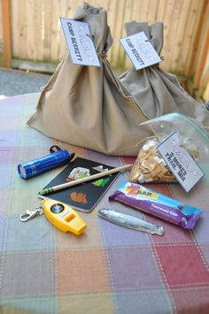 Camping theme boys 9th birthday party.  Goodie bags with flashlight, whistle/compass, journal and pencil, granola bar and trail mix.