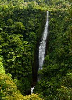 20 reasons to visit Samoa - Matador Network.