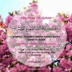 thepiercingstar — Collection of Rabbana Duas from the Quran =) Quran Quotes Love, Quran Quotes Inspirational, Islamic Phrases, Islamic Messages, Pray Allah, Laylat Al Qadr, Ramadan Day, Ramadan Prayer, Duaa Islam