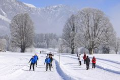 Travel like the locals do on a Cross-Country Skiing vacation in Slovenia, Italy & Austria with VBT.