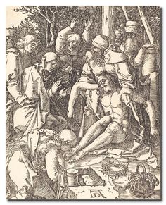 Reprodukcja Albrecht Durer kod obrazu durer241