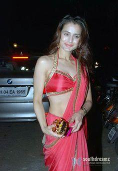 Amisha Patel Hot in Red Saree