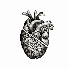 """You look not to just accidentally die … – Good Pins! Pencil Art Drawings, Art Drawings Sketches, Tattoo Drawings, Unique Tattoos, Small Tattoos, Brain Tattoo, Brain Art, Brain Drawing, Medical Art"