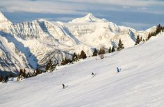 Where to eat, drink, shop and ski in Canmore