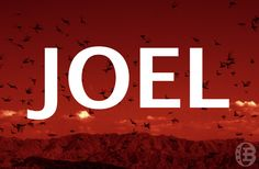 Joel Bible lesson overview