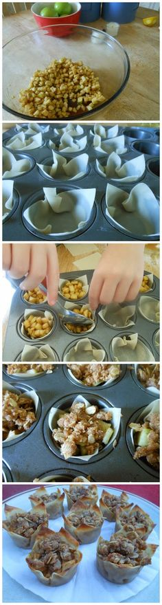 Mini Apple Pies with Wonton Wrappers Ingredients: wonton wrappers (I used 24 for the mini-pies and then extras for the crispy apple wontons) 4 medium Granny Smith apples, peeled and diced juice and...