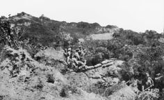 Trenches above Anzac Cove 25th April, 1915