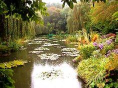 Monet's Garden Brightening Woodland Areas