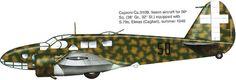 Caproni Ca.310 B