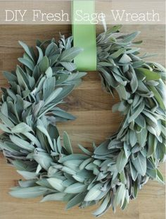 Fresh Sage Wreath DIY Fresh Sage Wreath, do you have an abundant sage plant in your herb garden? Use it up before it goes bad making this wreath and use the sage as it dries! Before Before is the opposite of after. It may refer to: Noel Christmas, Christmas Crafts, Christmas Decorations, Holiday Decor, Christmas Scents, Seasonal Decor, Diy Fall Wreath, Holiday Wreaths, Wreath Ideas