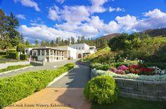 CedarCreek Estate Winery in Kelowna, British Columbia.   #ExploreBC #ExploreKelowna #ExploreCanada #Winery #WIne #Okanagan #BCVQA