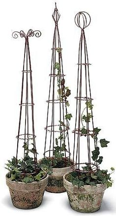 Pretty!  I bet I could make these with tomato cages and wire benders.  Would cherry tomatos look good on here?  Bigger pots for sure would be needed..