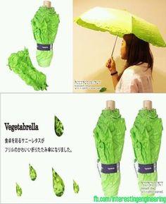 Paraguas lechuga!