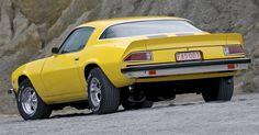 Classificado desde seu nascimento, em 1966, como pony car e/ou muscle car, Chevrolet Camaro foi concebido com o intuito de disputar mercado com o Ford Mustang, seu maior rival