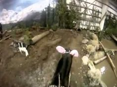 ▶ Oregon Horse Center National Mountain Trail Competition - YouTube  This looks great fun! I'd love to be able to do this in Australia :)