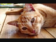 Lille Katt (med text)