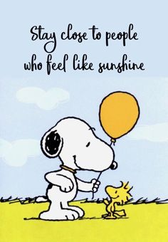"""""""Snoopy & Woodstock"""" quotes quotes for teens quotes humor quotes inspiraitonal quotes sarcasm about love change about love crushes about love cute about love family about love for him about love soul mates Charlie Brown Y Snoopy, Charlie Brown Quotes, Snoopy Love, Snoopy Images, Snoopy Pictures, Funny Pictures, Peanuts Quotes, Snoopy Quotes, Peanuts Cartoon"""