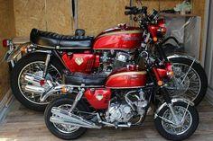 to Honda lovers this looks like a Lion & Cob Honda Motorcycles Cbr, Honda Bikes, Honda Cb750, Cool Motorcycles, Yamaha, Honda Motorbikes, Moto Bike, Motorcycle Bike, Custom Mini Bike